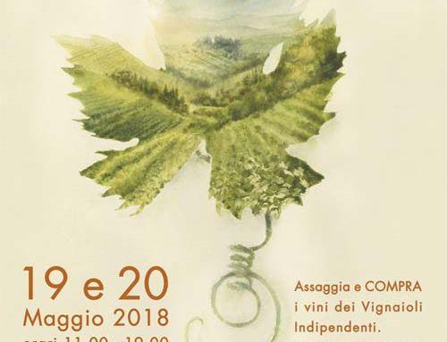 Va in scena il territorio: Mercato dei vini FIVI Roma Cinecittà